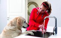 Jak oszczędzać wodę: wodooszczędna armatura i instalacje