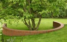 Nawożenie drzew rosnących na trawniku (PORADA)