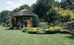 Projektowanie ogrodu. Poradnik dla samodzielnego ogrodnika